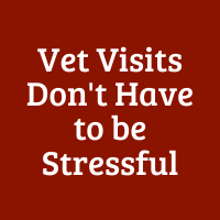 Vet Visits Don't Have to be Stressful