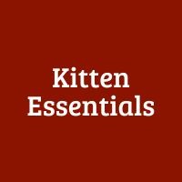 Kitten Essentials