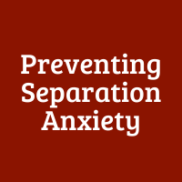 Preventing Separation Anxiety